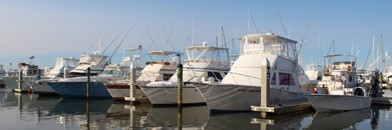 Boats Docked at Conch House